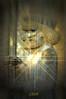 New year (Norooz) (Hamid. M.) Tags: world light people photoshop freedom persian spring peace iran roots persia newyear tehran tomorrow pars treeoflife persiangulf tabriz norooz perspolis persianculture taraneh sabze parsi pasargad parsian persiannew parsoomash parsomash تهران شیراز کورش منشور ایران ذوالقرنین پاسارگاد پرسپولیس