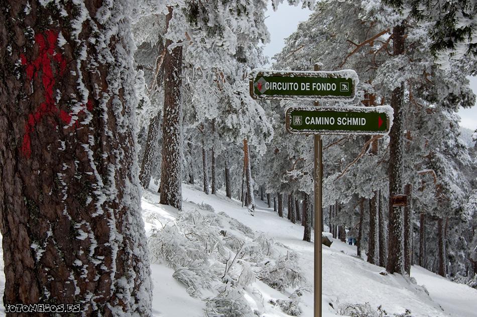 7 Rutas por la Sierra de Madrid que no te debes perder