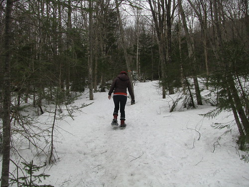 Snowshoeing at The Balsams