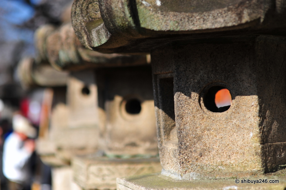 Some of the 50 stone lanterns that line the road to the Toshogu Shrine.