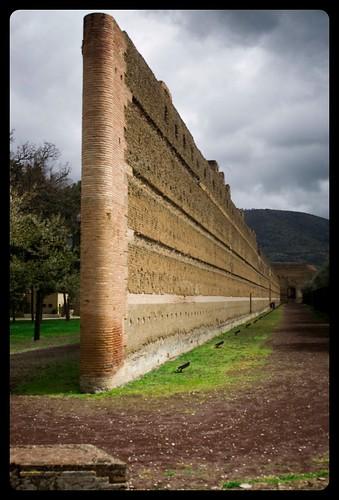 Il muro del Pecile