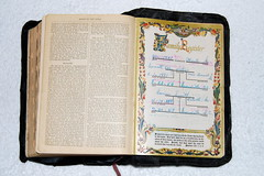 Louise & Alma's Bible