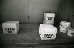 milk crates (teh hack) Tags: camera bridge bw film mike analog trash toy downtown edmonton slim wide delta nb iso plastic alberta 400 200 pro asa clone vivitar ultra ilford ei toycam analogic trashcam 22mm ddx ilfotec eximus