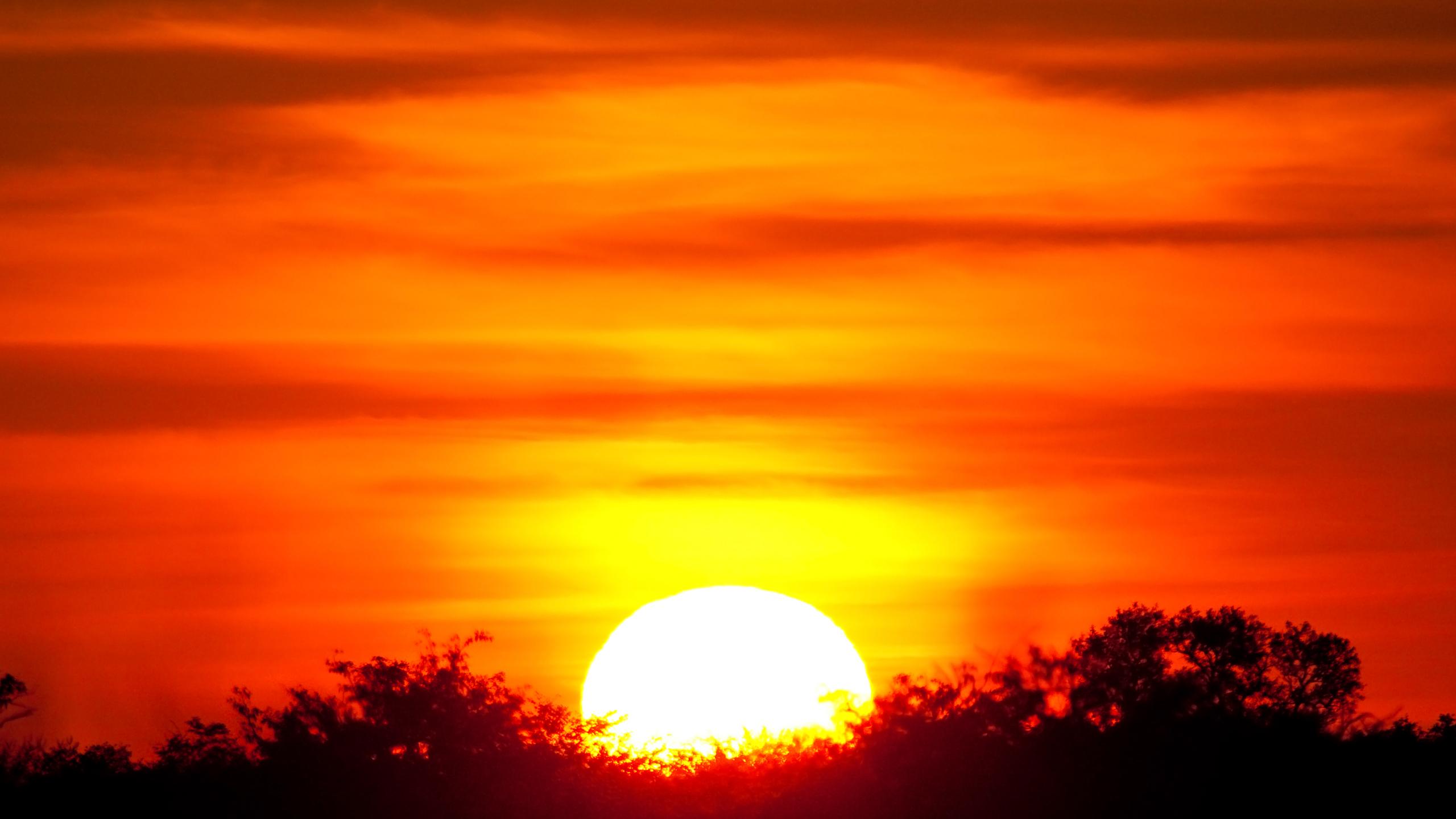setting sun african caribbean - photo #1