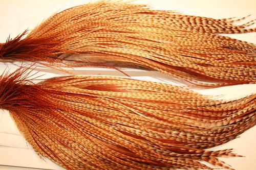 1/2 Cape Bronze Barred Dark Ginger