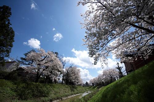 201004178837川っ端_R
