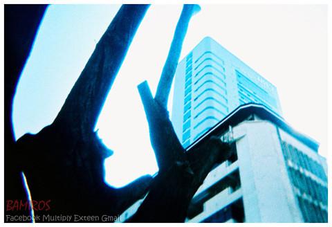 New-building2