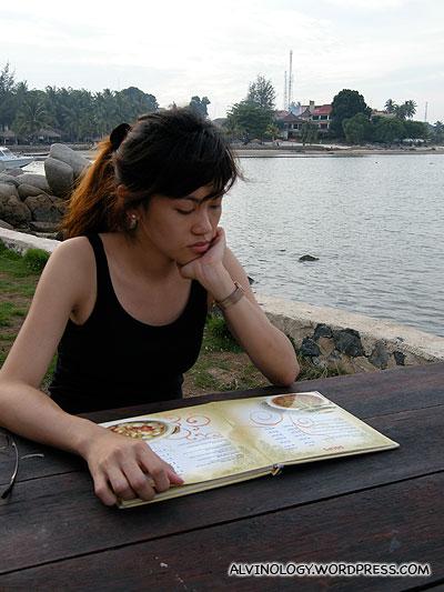 Browsing through the menu