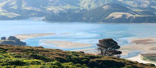 Otago Peninsula 15