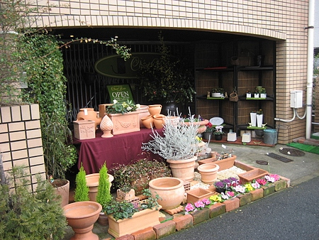 井口の花屋 シャノアール 4
