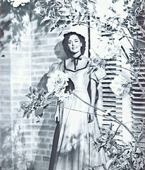 Maureen O'Sullivan (Silverbluestar) Tags: girls bw classic film beautiful beauty fashion vintage stars 1930s women pretty european hollywood actress movies british celebrities brunette mgm metrogoldwynmayer maureenosullivan