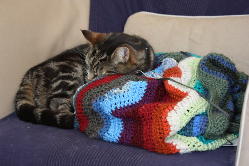 Kittys like crochet