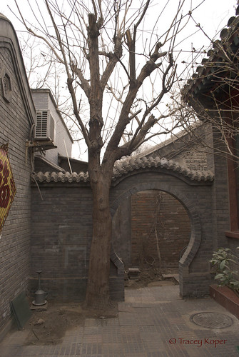 Hutong Courtyard copy
