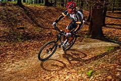 Mountain Bike Session With R. - Brussels (Bichro) Tags: brussels mountain bike bicycle de photography cycling nikon belgium belgique extreme mountainbike bruxelles dirt software nik freeride fort cyclisme descente soignes bichromie d80 bichro machintrucbe loisirssportsspotsvtt photoblogmachintrucbe