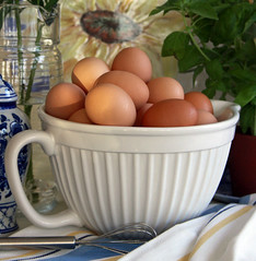 Fried, Poached, Scrambled, Coddled,or Deviled? (linda yvonne) Tags: stilllife morninglight herbs stripes saltshaker bowl sunflower eggs pitcher platter whisk teatowel browneggs blueware