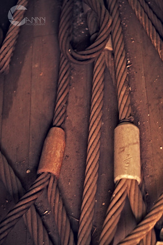 Traincars_Cables_2