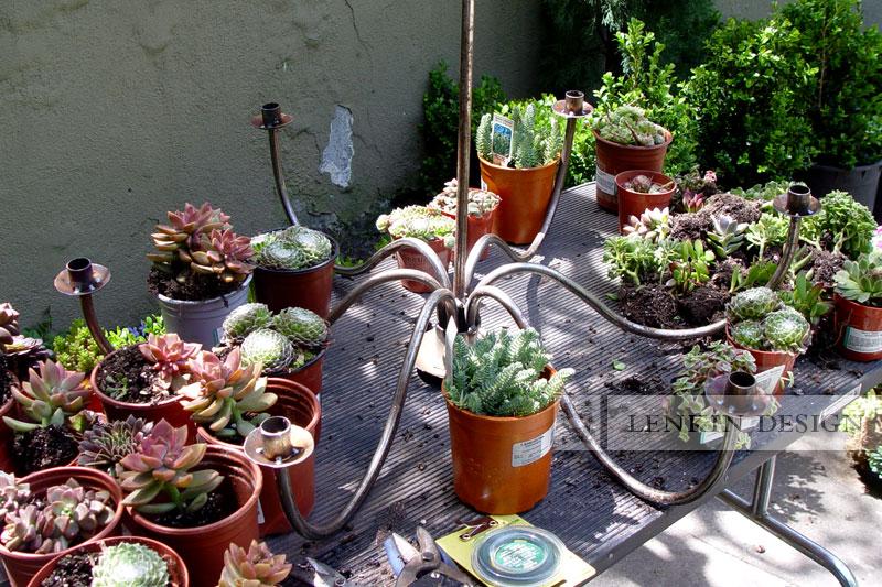 succulent-chandelier-1
