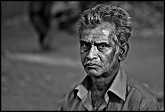 The Look (Prabhu B Doss) Tags: portrait blackandwhite india macro nikon market bangalore 105mm fruitvendor humanfaces d80 madiwala sunshinemarket prabhub prabhubdoss zerommphotography 0mmphotography