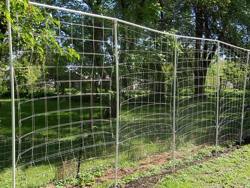Bean Fence