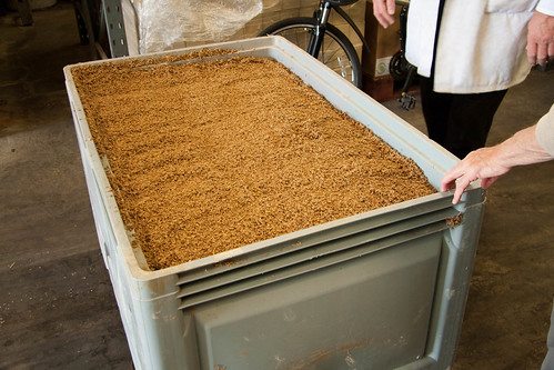Spent Grain