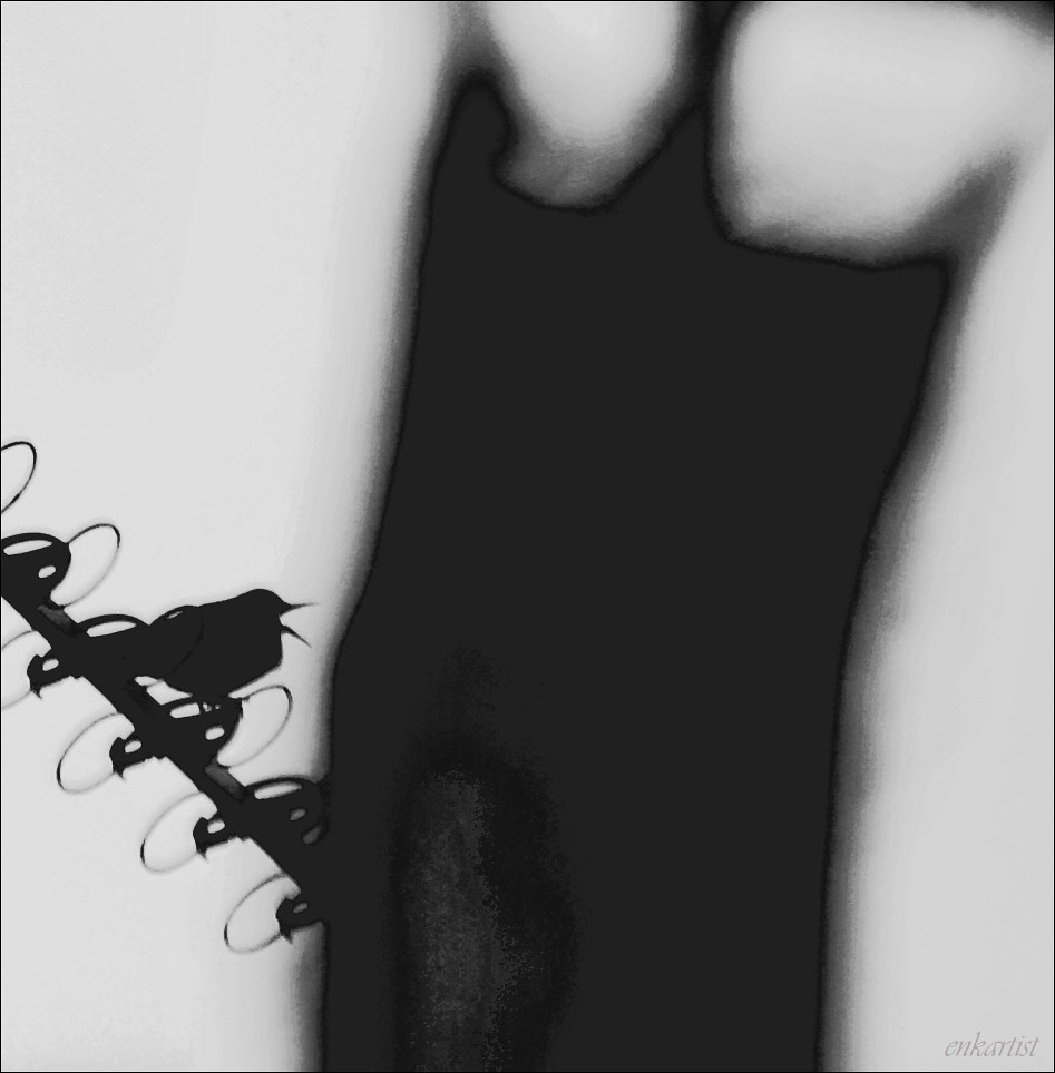 Michael Bublé images