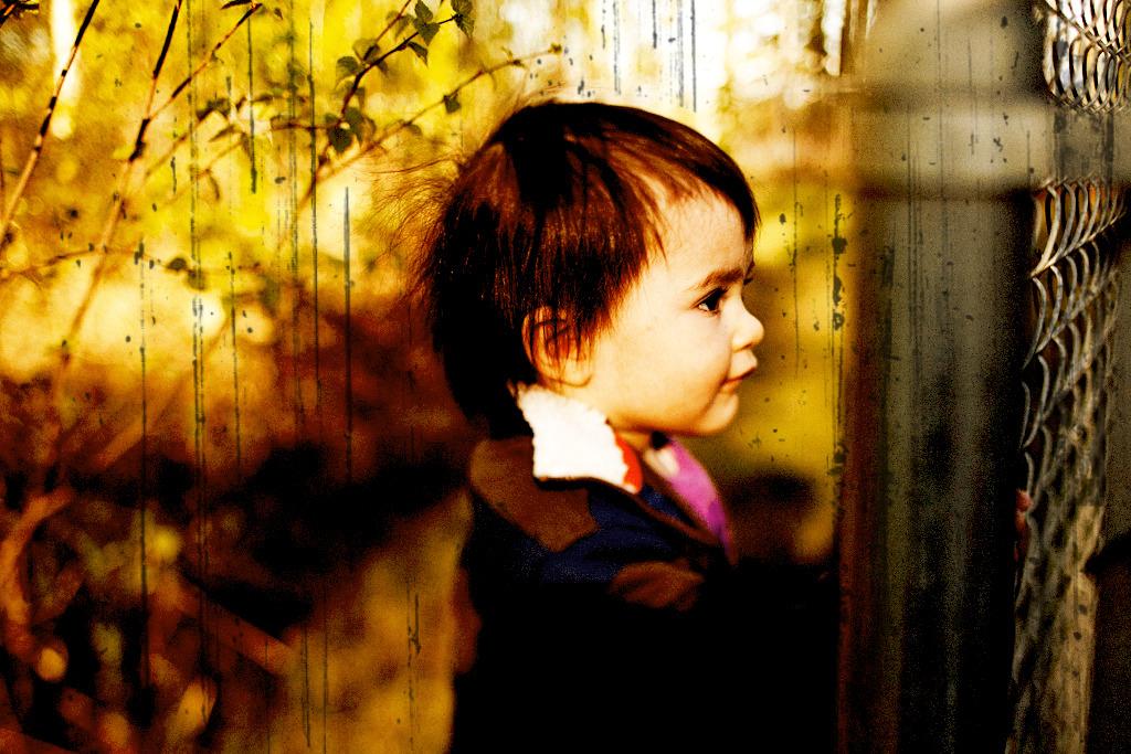 IMAGE: http://farm5.static.flickr.com/4037/4627332621_a3504161ae_o.jpg