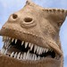 taranasuarus rex