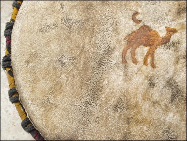Piel de camello