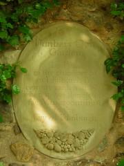 Mushroom plaque