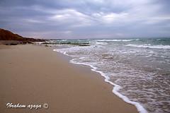 Sea: Tripoli (Azaga ) Tags: life old travel light sunset portrait bw sun black color green bird eye tourism animal night canon photography desert abraham camel ibrahim libya tripoli touareg  ghadames       50d   sabha    sebha    canon50d   ibrahem  ghademes    azaga nescafee712
