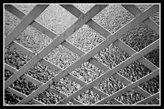 Criss Cross (edenmatt) Tags: bridge river cross suspension ironwork dumfries galloway criss nith