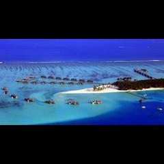 Choose your watervilla (JannaPham) Tags: ocean trip travel blue sea panorama holiday tree water canon boats island happy eos hotel palm resort villa 5d monday gili maldives markii hydroplane soneva watervilla jannapham sonevagiliresorthotel
