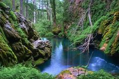 Westcave Preserve (Jim Nix / Nomadic Pursuits) Tags: park nature water pool beautiful creek austin landscape waterfall nikon stream natural hike photoblog grotto preserve hdr highdynamicrange tonemapped tonemap westcavepreserve d40x nomadicpursuits