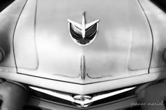classic car 208 (joannemariol) Tags: classic classiccar vintageauto vintageretro joannemariolphotographics classiccarphotography