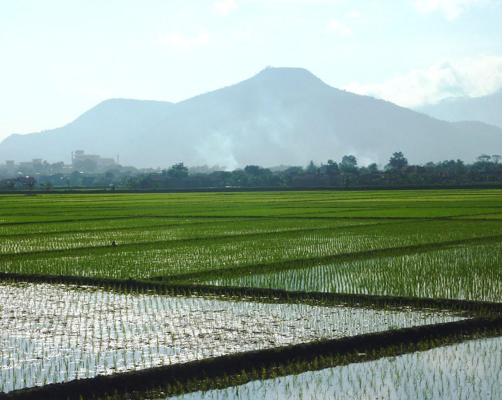 Java-Bandung-Yogyakarta (6)
