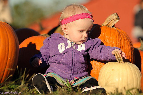Zoey in the pumpkin patch