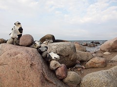 Steinkette (Eijiha Jimia) Tags: balticsea rgen ostsee