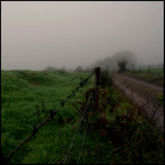 come away with me (_wysiwyg_) Tags: autumn mist fall field fog automne square countryside barbwire campagne brouillard chemin champ brume carr barbels