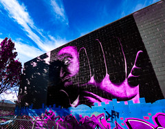 No! (Steve Taylor (Photography)) Tags: art digital mural graffiti streetart tag black blue mauve grey man newzealand nz southisland canterbury christchurch city cbd tree glow sky cloud autumn hand face wongi wilson tonyfomison no
