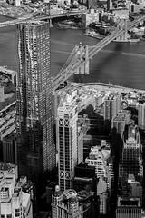 Contrasts (Borgkvist) Tags: blackandwhite newyork city downtownmanhattan wtc oneworldtradecenter brooklynbridge