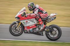 #21 - John Hopkins - Moto Rapido Ducati (G&R) Tags: john hopkins moto rapido ducati 21 bsb superbikes motorcycle racing snetterton canon 7d2