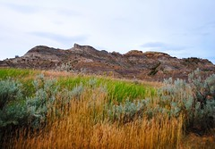 grass & rocks (ekelly80) Tags: montana makoshikastatepark june2017 summer roadtrip keisgoesusa badlands glendive geology scenery hike trail view meadow grass green colors mountains hills rocks rockformations layers