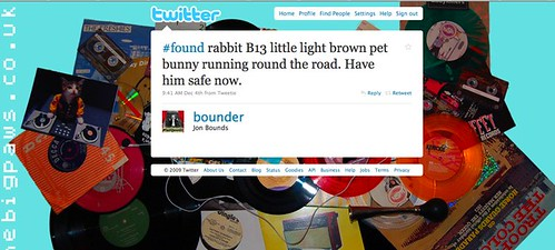 Bounder Twiter update: Found Bunny
