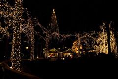 Chistmas lights (Rudi Pauwels) Tags: christmas xmas gteborg navidad sweden schweden gothenburg noel liseberg sverige weinachten jul natale kerstmis week50 julmarknad d80 nikond80 5212of2009