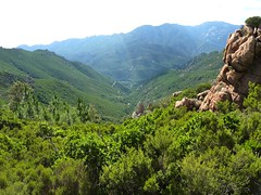 La vallée vers le Cavu depuis le col  695 m