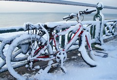 Red bicycle in the snow