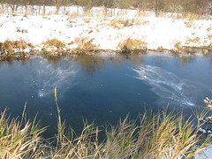 016 Iced over Canal (Mike Riemer) Tags: snow tring