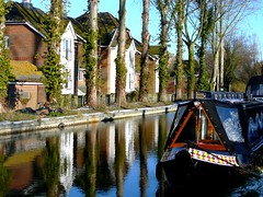 Riverside in Reading (Tasmin_Bahia) Tags: blue trees houses winter light england brown black colour reflection tree green nature water beautiful grass leaves reflections river outside outdoors boat pretty peace shadows bright branches peaceful fresh reflective ripples colourful simple magical bushes