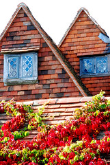 Seeing Double at Great Dixter! (antonychammond) Tags: new uk blue windows red england green photo britain bricks tiles middleages eastsussex greatdixter coth kartpostal christoperlloyd estremità photoexplore manorhousegarden lovely~lovelyphoto newphotodistillery
