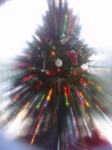 """""""starburst"""" Jelly Lens"""